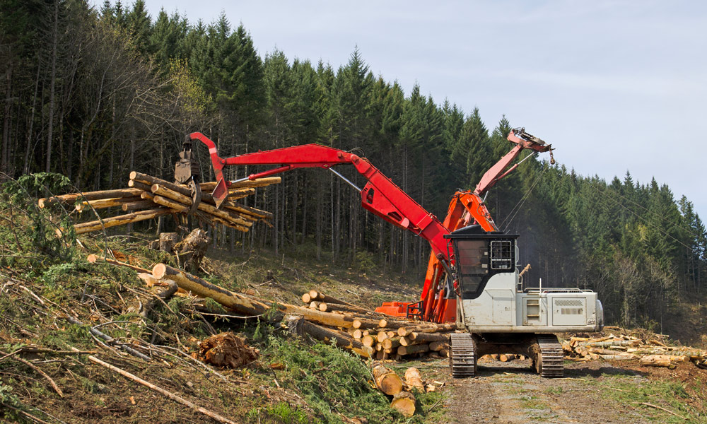 Hydraulic Components and Services for Forestry/Logging Equipment